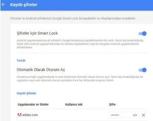 google chrome kayıtlı şifre